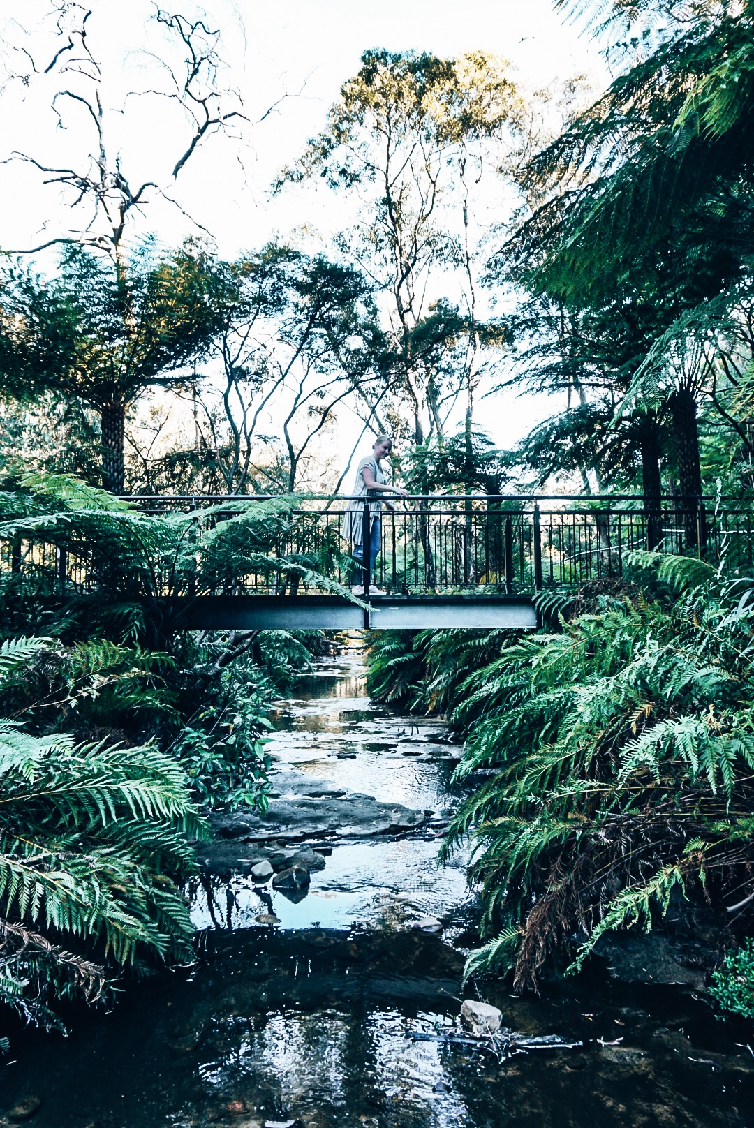 Woman standing on bridge over a creek in Blue Mountains