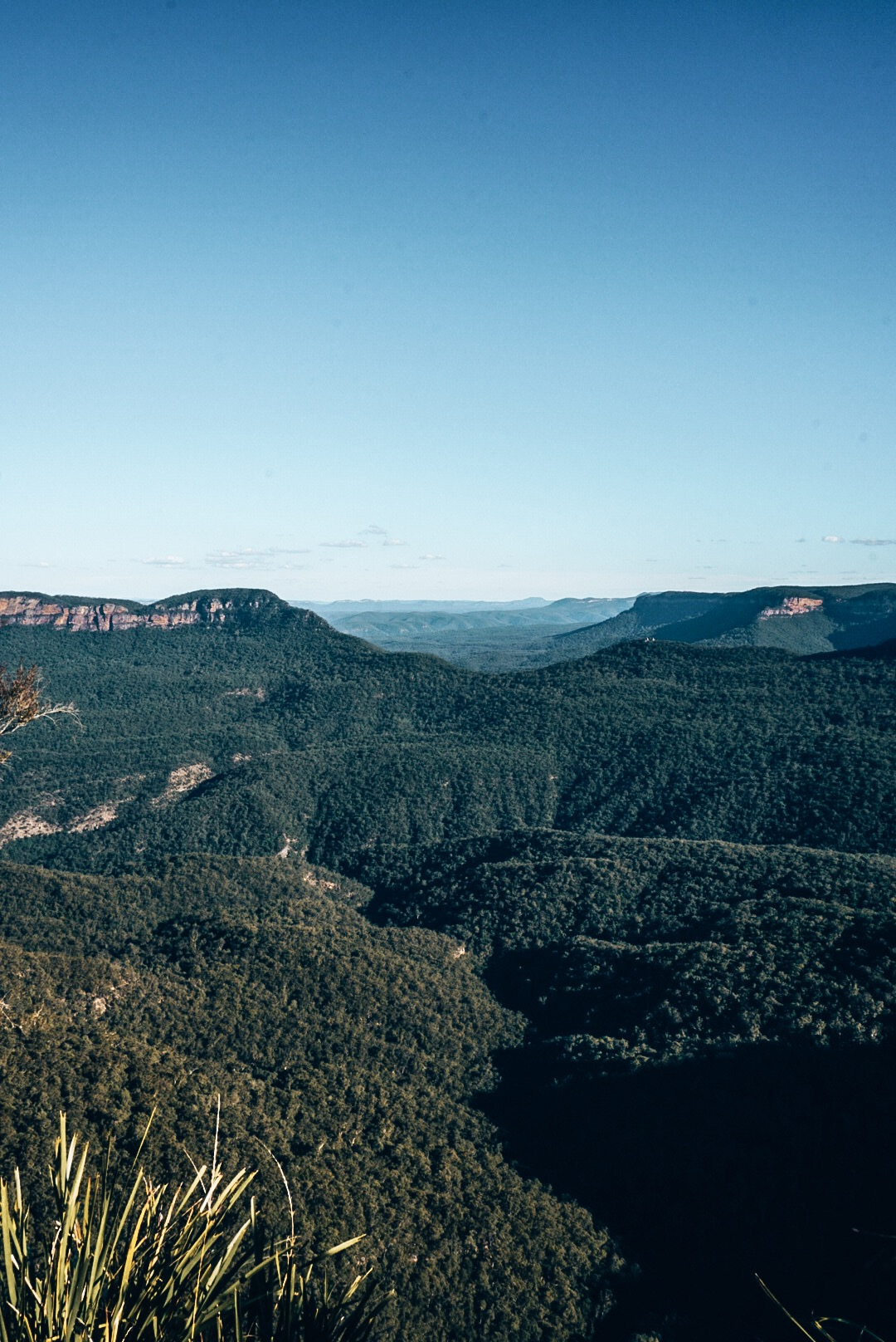 View of Blue Mountains