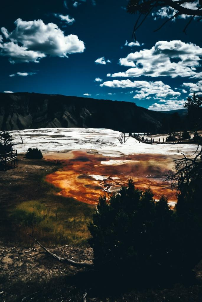 Another view from the top of Mammoth Hot Springs