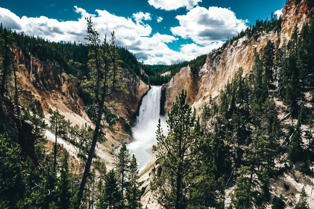 Waterfall view of Grand Canyon in Yellowstone