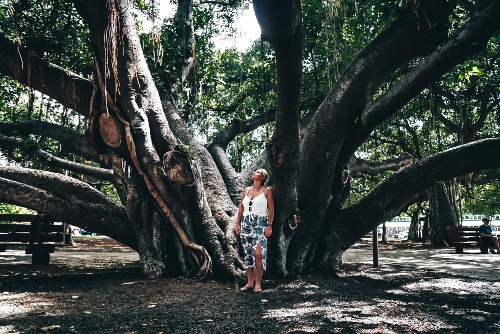 Woman standing in front of Banyan Tree the size of a city block