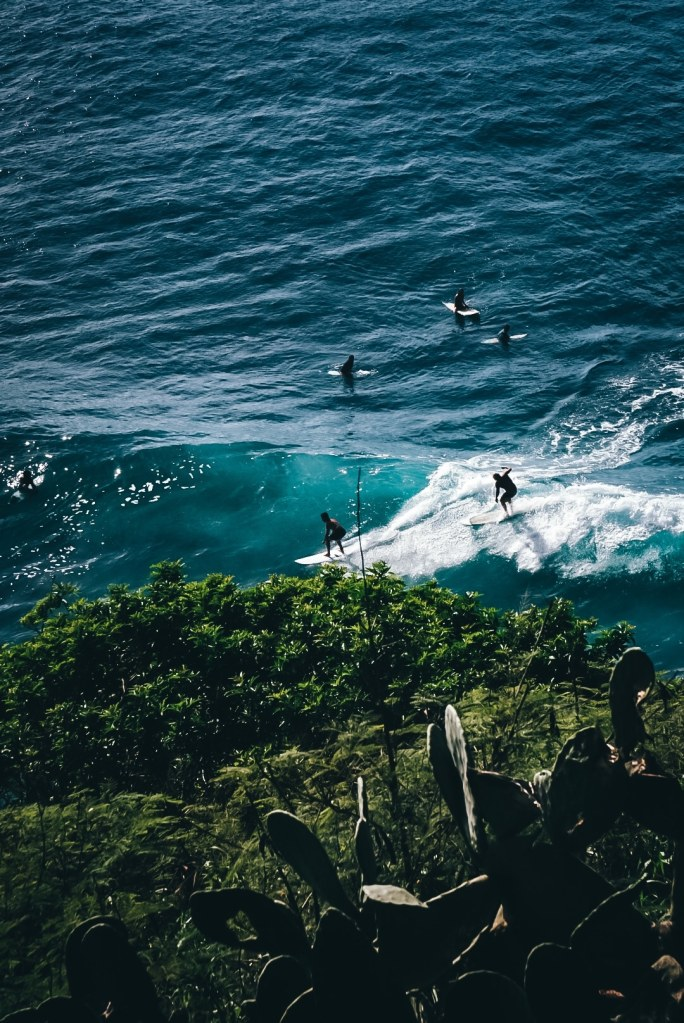 Multiple surfers either waiting for or riding waves at Honoloa Bay