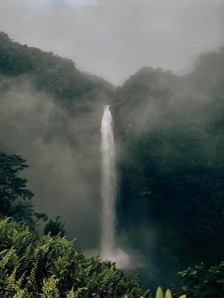 Hazy waterfall day at Akaka Falls