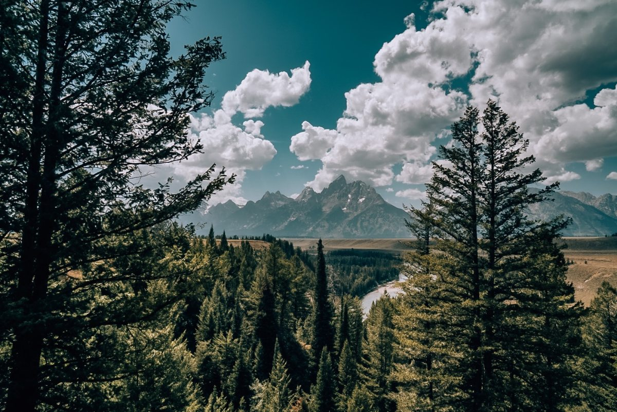 View of the Grand Teton mountains from the Snake River Overlook.