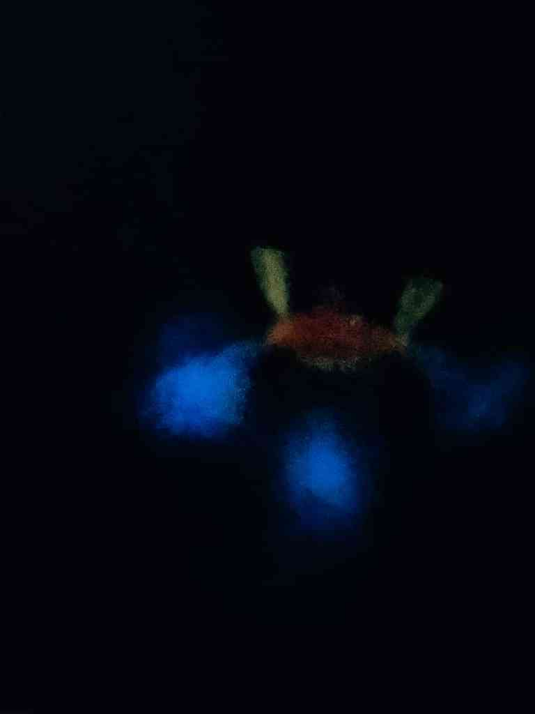 Image of woman swimming in complete darkness at La Parguera - bioluminescent bay Puerto Rico tour