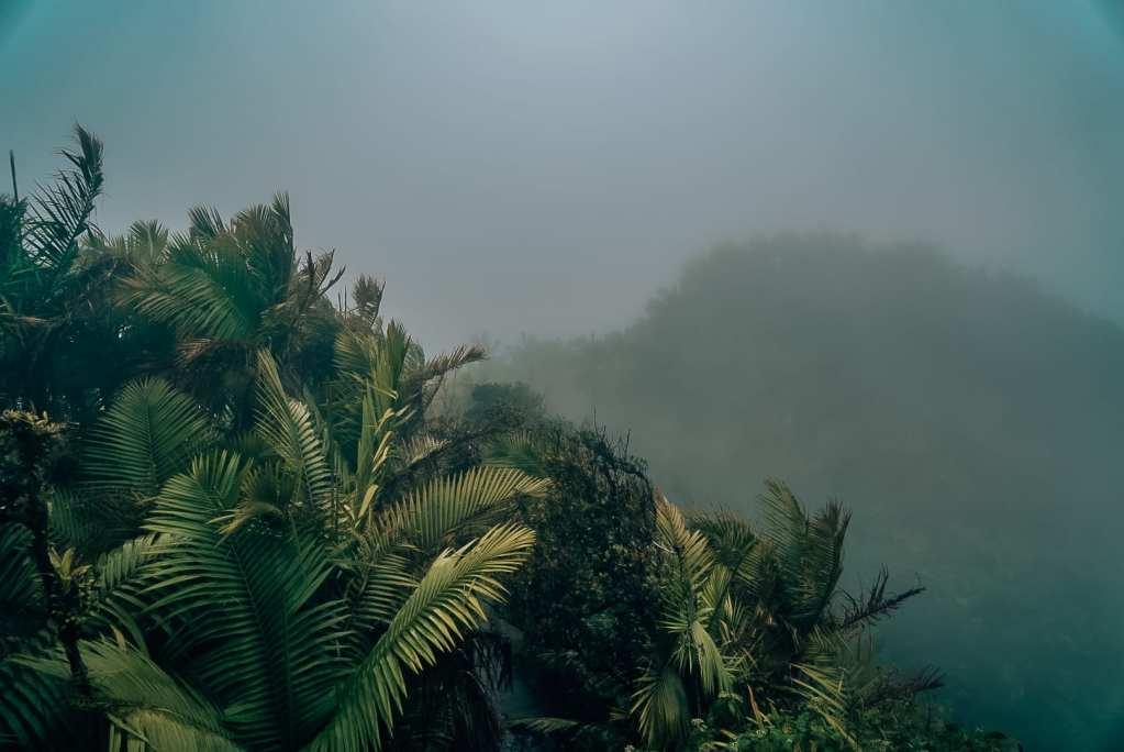 El Yunque hazy sky