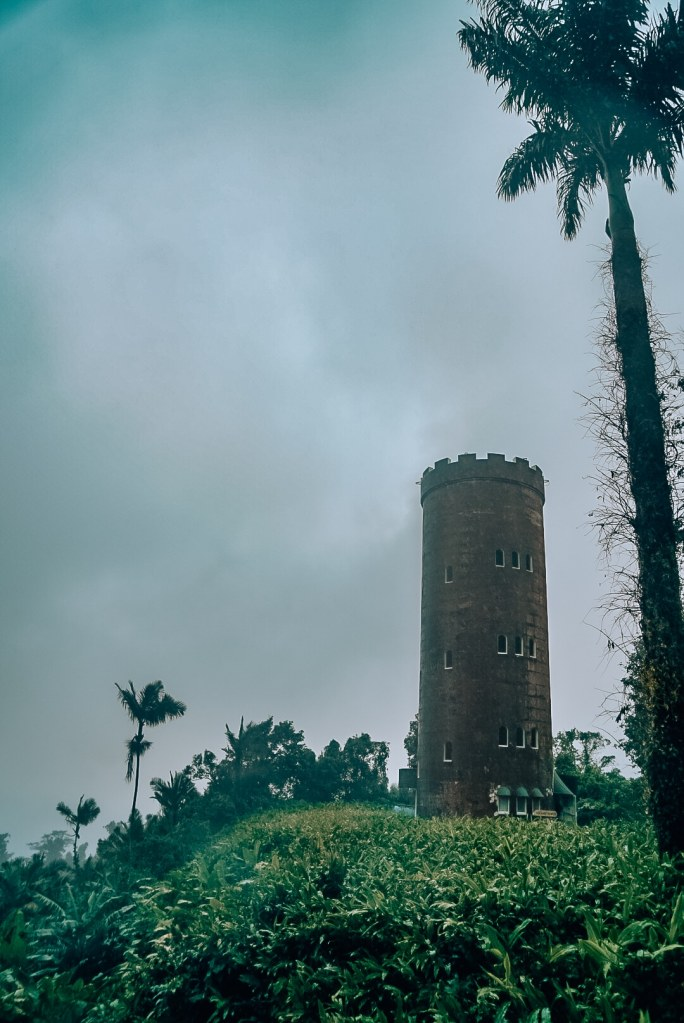 View of a tower amid palm trees