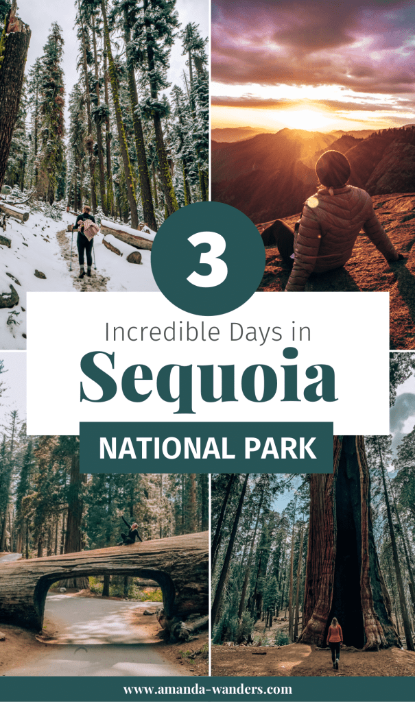 Pinterest cover for this Things To Do In Sequoia National Park Blog