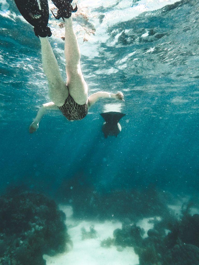 Woman snorkeling behind manatee underwater