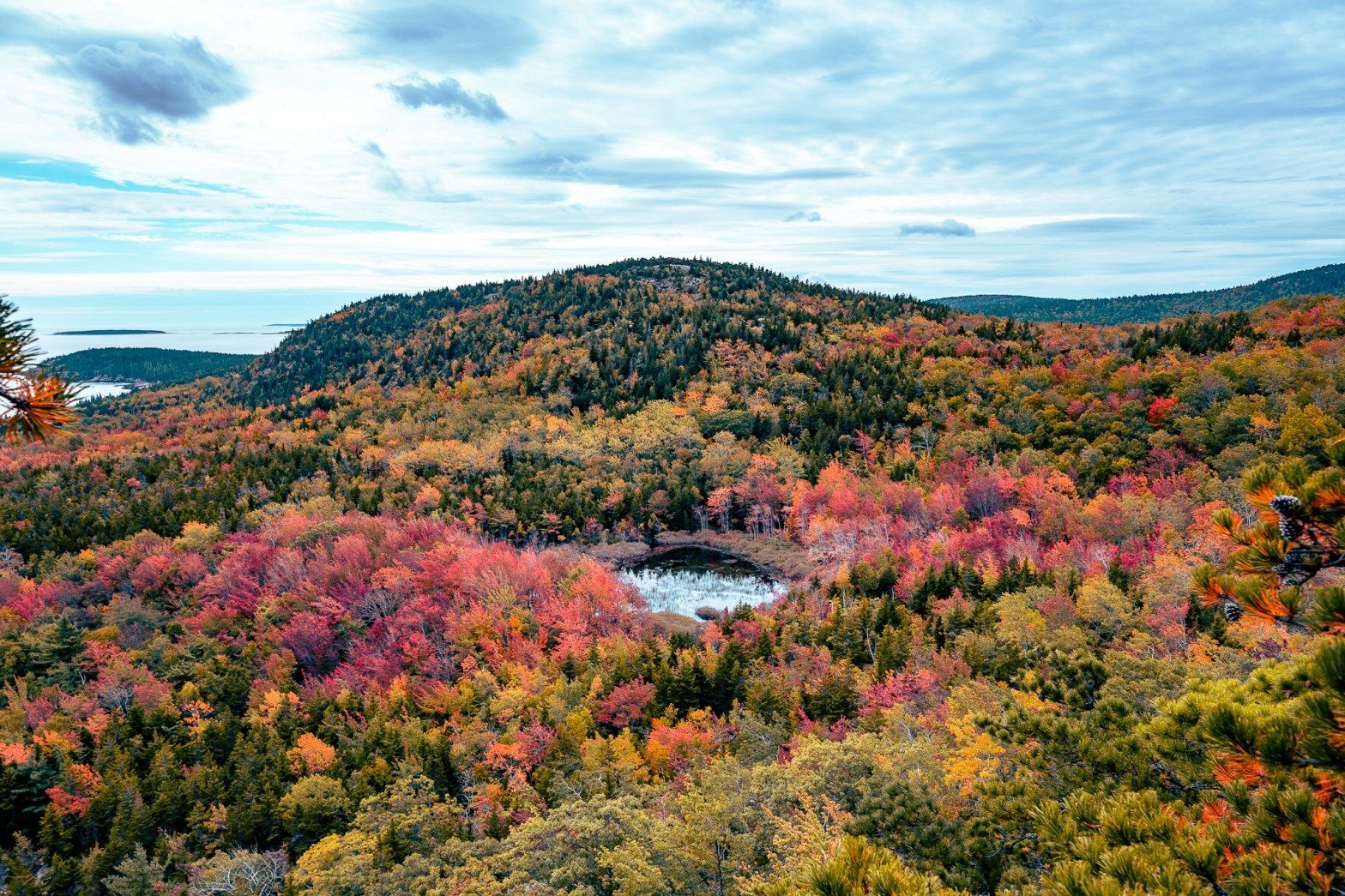 Fall colors of Acadia National Park in October
