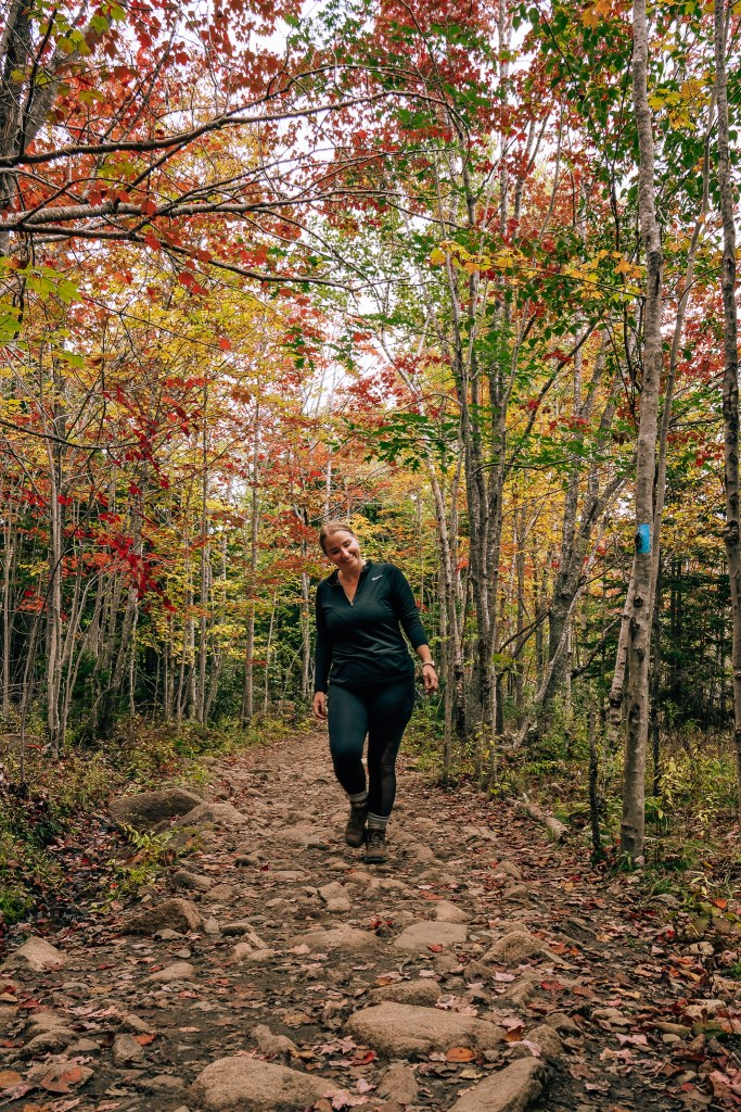 Woman walking through a forest in Acadia National Park that is turning red for autumn